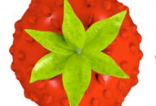 Smultron 12.1.1(网页文本编辑器)for Mac中文破解版