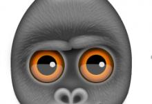 Debookee 7.5.1(抓取网络上的数据包的分析工具)for Mac破解版