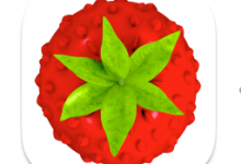 Smultron 12.4.2(网页文本编辑器)for Mac中文破解版